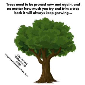 Trees need to be pruned now and again