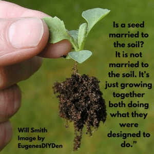 """Is a seed married to the soil_ It is not married to the soil. It's just growing together both doing what they were designed to do."""""""