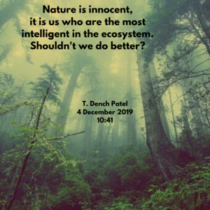 Nature is innocent, it is us who are the most intelligent in the ecosystem. Shouldn't we do better_